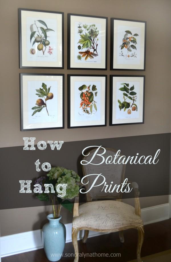 How to Hang Botanical Prints- Sondra Lyn at Home