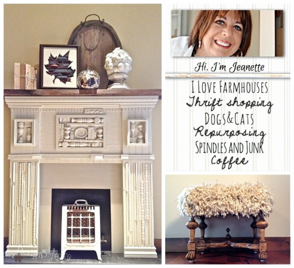 Jeanette-CountryDesignStyle-collage