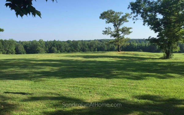 A Country Open House- View - Sondra Lyn at Home-