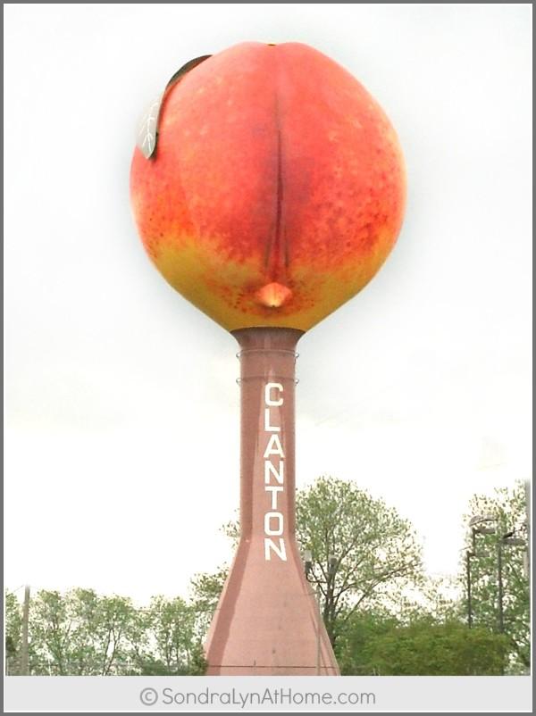 Clanton Peach -Sondra Lyn at Home.com