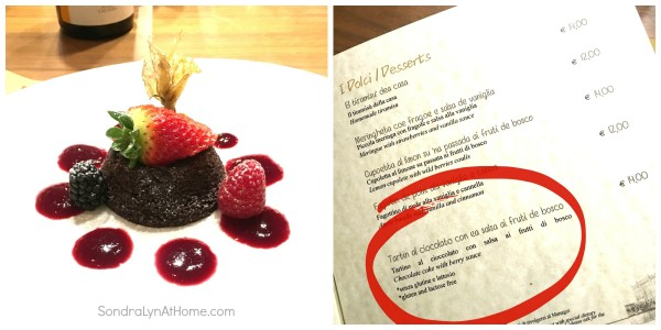 Bacaromi - Chocolate Cake with Berry Sauce -collage- Sondra Lyn At Home.com