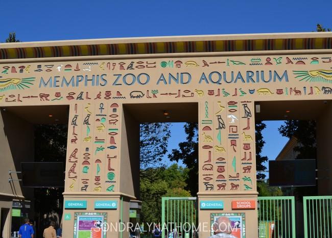 memphis-zoo-and-aquarium-sondra-lyn-at-home-com