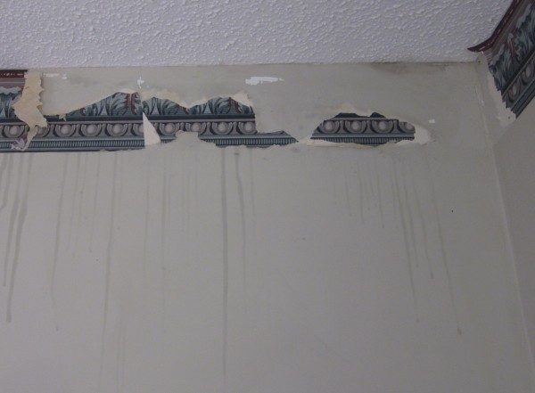 How to remove a wallpaper border sondra lyn at home for Removing vinyl wallpaper