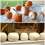 {Glam} White Pumpkins