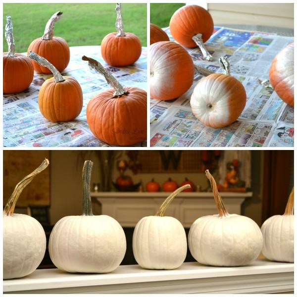 pumpkinsCollage1