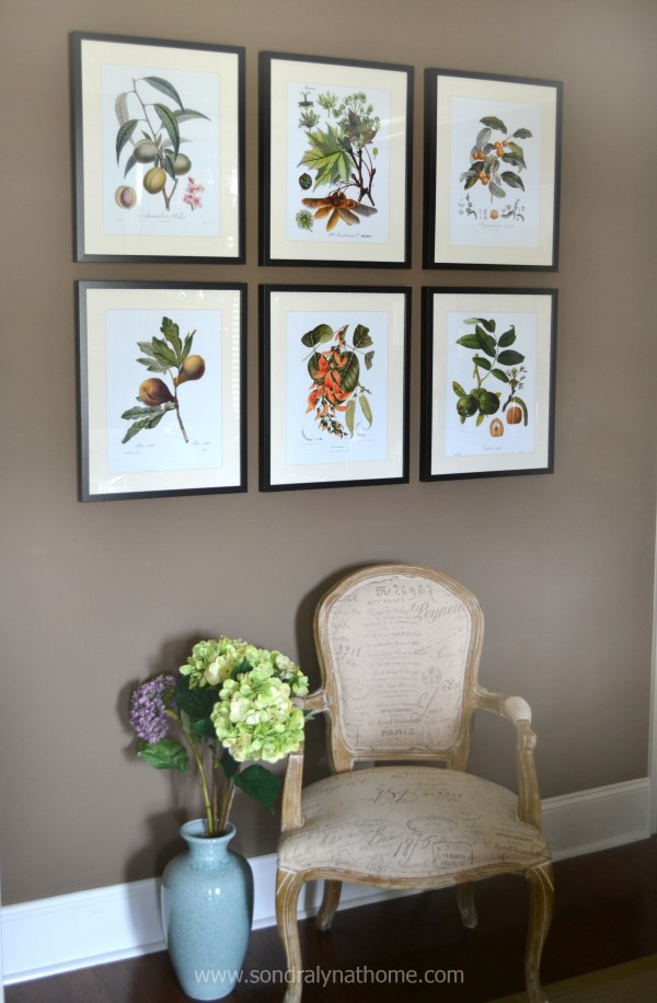 Botanical Prints- Sondra Lyn at Home
