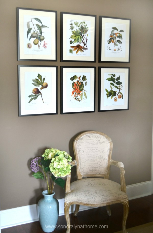 Botanical Prints- Sondra Lyn at Home