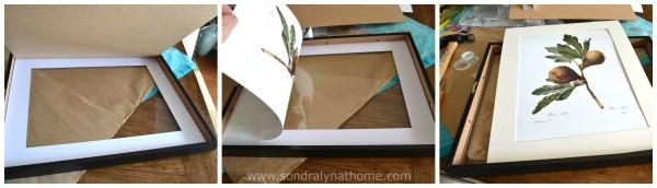 Framing Botanical Prints- SondraLyn at Home