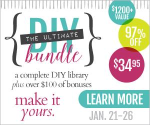 The Ultimate DIY Bundle