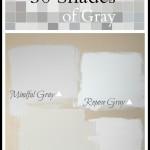 {More Than} 50 Shades of Gray