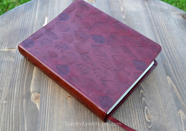 Bible Journal - Sondra Lyn at Home.com