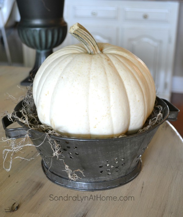 How to Make an Easy PumpkinTopiary -- Sondra Lyn at Home