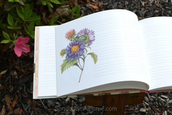 Blank Page from Guest Book - Sondra Lyn at Home