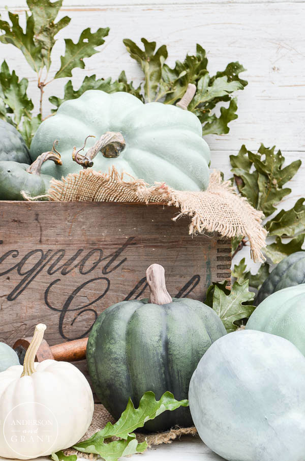 dry-brushed-chalk-painted-pumpkins